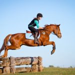 Horse-riding could improve your child's intelligence, study reveals